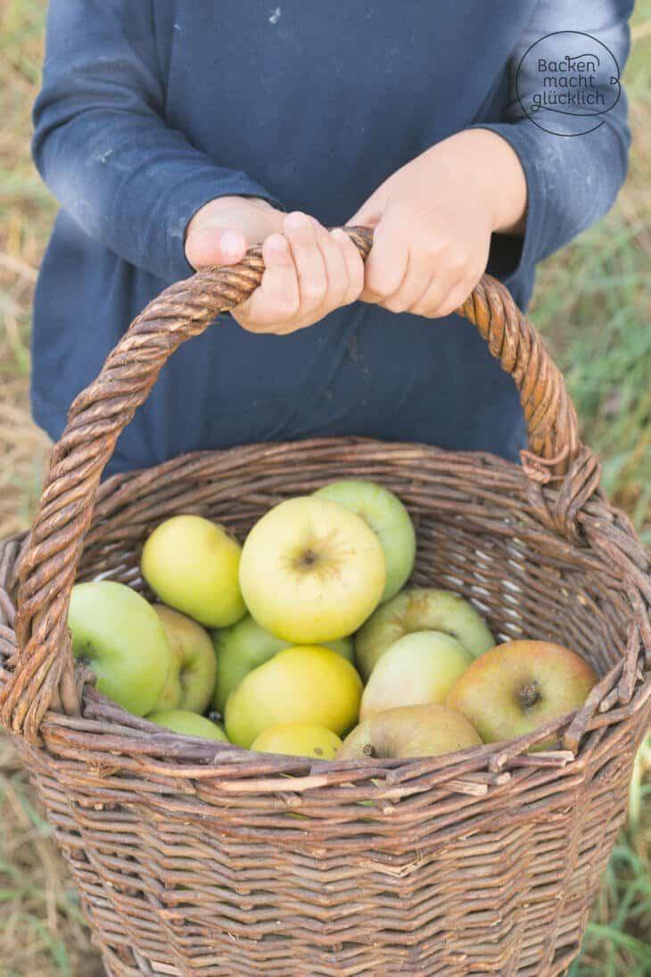 Apfelernte Apfelkuchen