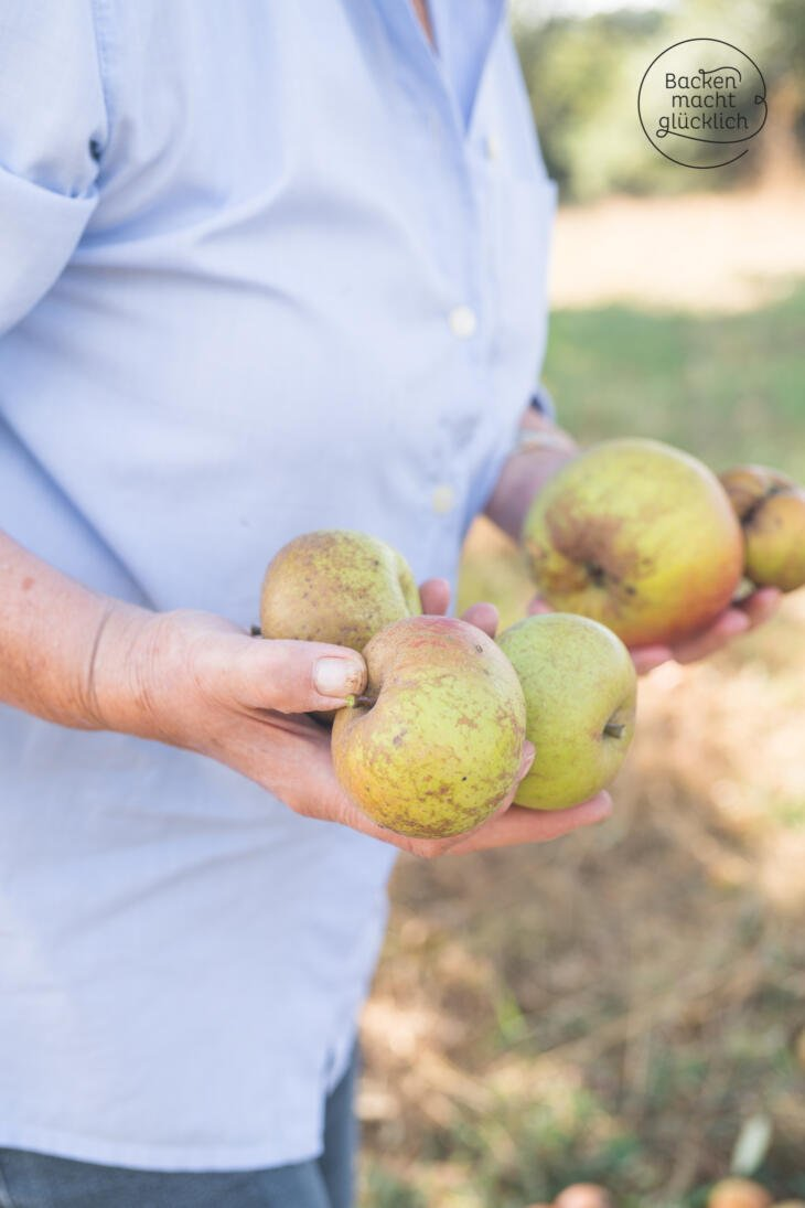 Apfelkuchen Fallobst